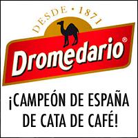 dromedario-cata