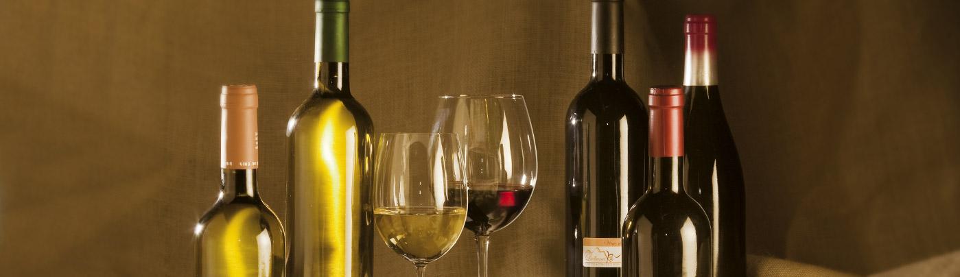 vinos-cantabria