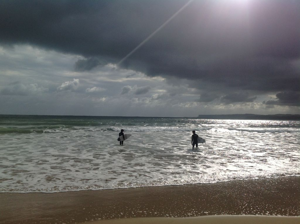 surfsardinero
