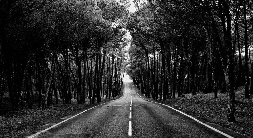 'Bajando a Liencres'. Un camino de cuento baja hasta la playa de Liencres. Autor: Luis Marina