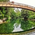 Así se tiran al río en Puente Viesgo