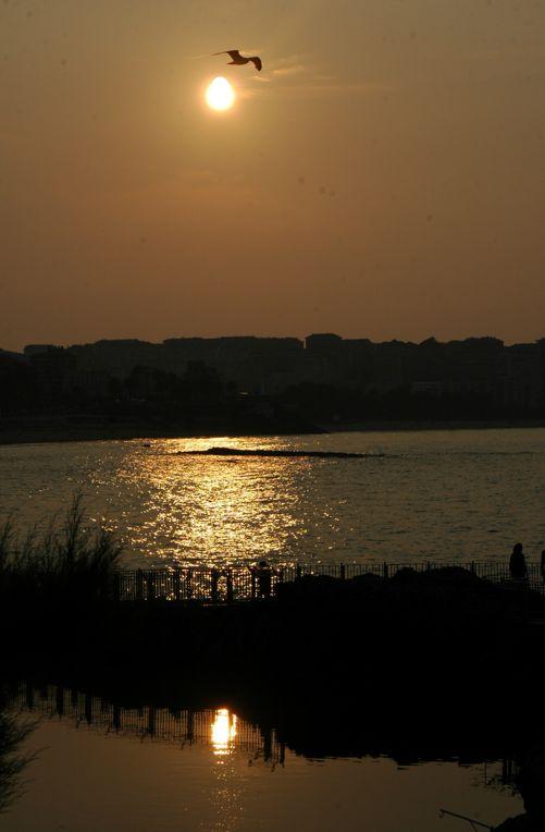 'Nos vemos mañana, Santander'. una foto tomada hace apenas unos días, desde la Península de la Magdalena. Un atardecer con la zona costera de fondo. Autora: Sara Castro