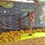 Exitazo de público en los limones solidarios de Novales