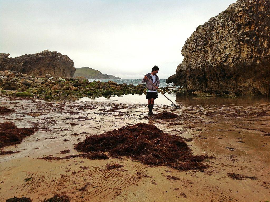 septiembre-de-algas-virgen-del-mar-santander