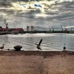 El Puerto de Santander tiene movimiento