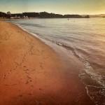 Una sirena se ha dado un paseo por la playa de la Magdalena