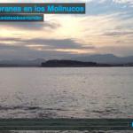 Cormoranes en los Molinucos