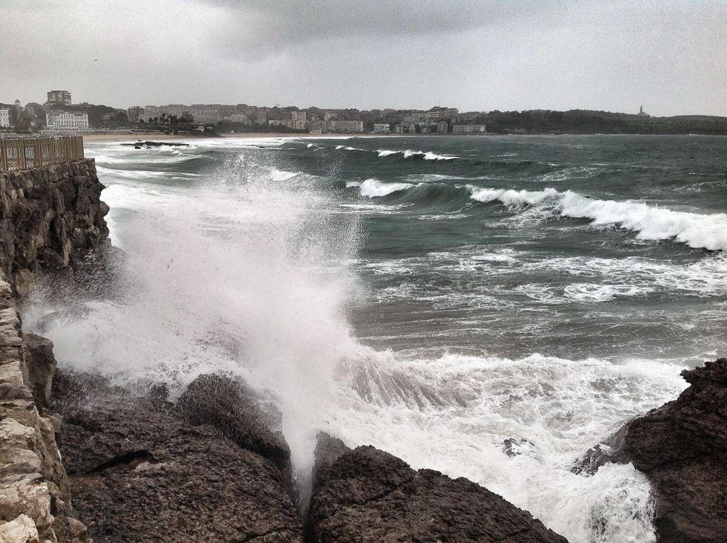 olas-focas-magdalena-santander