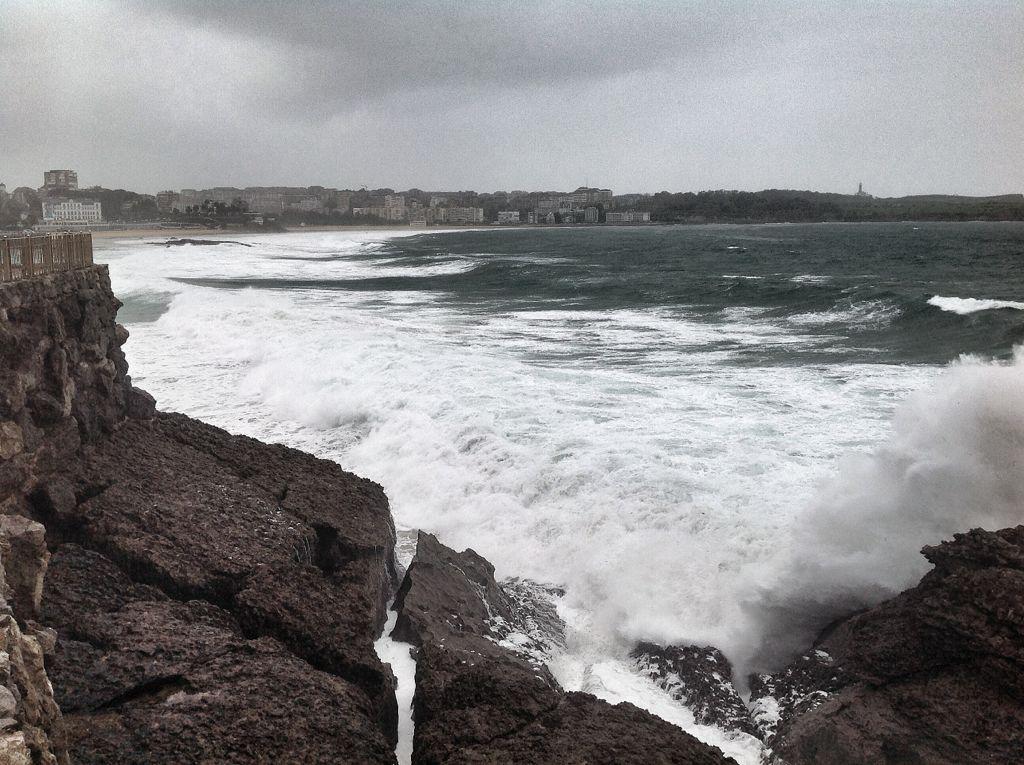 olas-focas-peninsula-magdalena-santander