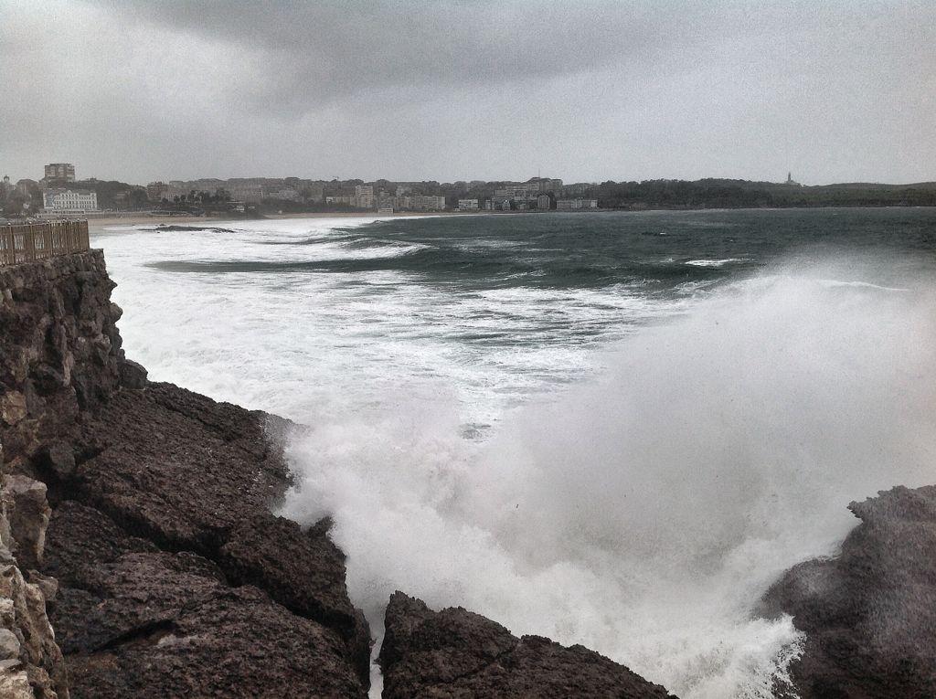 olas-focas-rompen-magdalena-santander