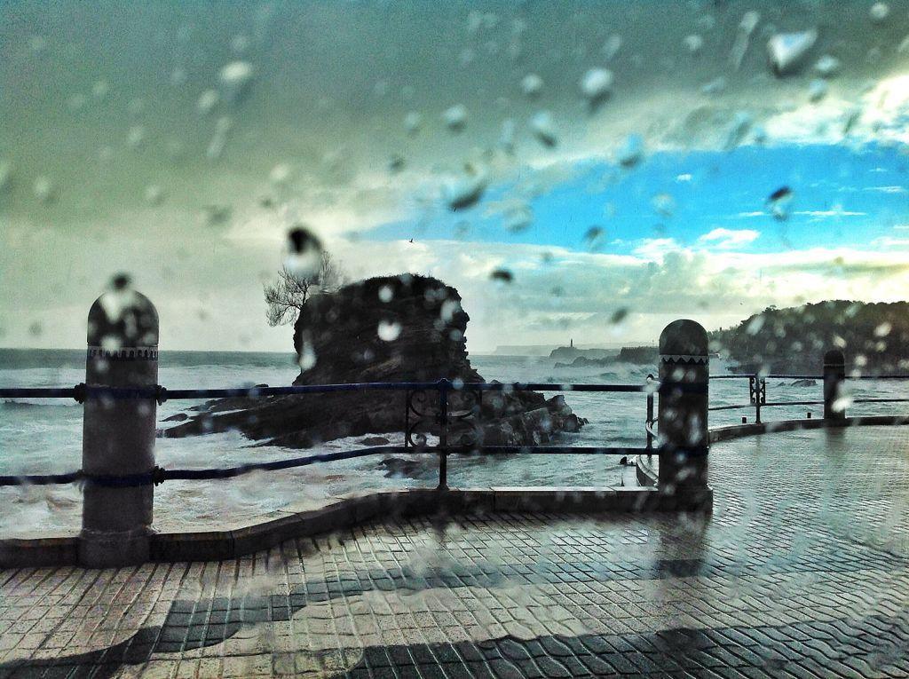 camello-pena-lluvia