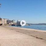 Gaviota, pedreñera, bahía de Santander