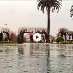 Lluvia y burbujas en Piquío