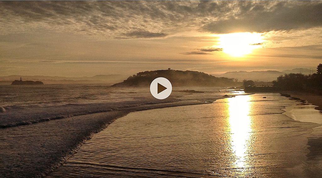 video-sol-sardinero-dorado