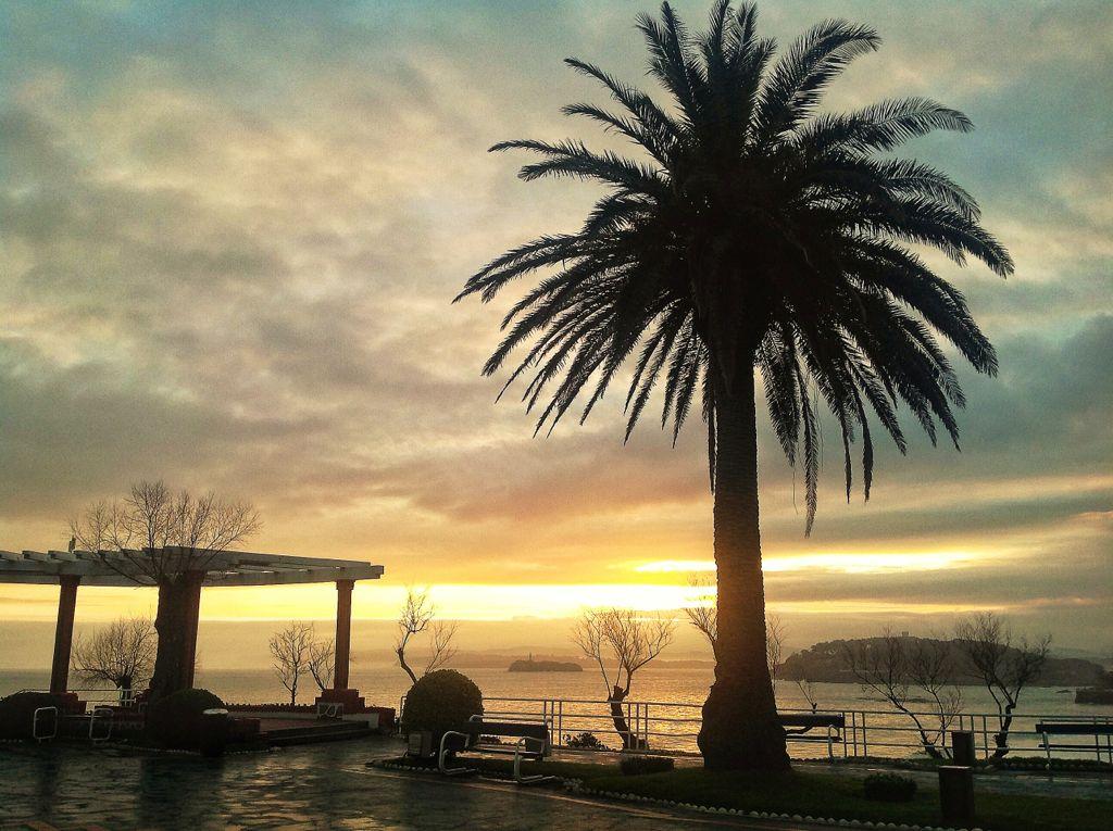 amanecer-piquio-palmera-santander-sardinero-tras-tempestad