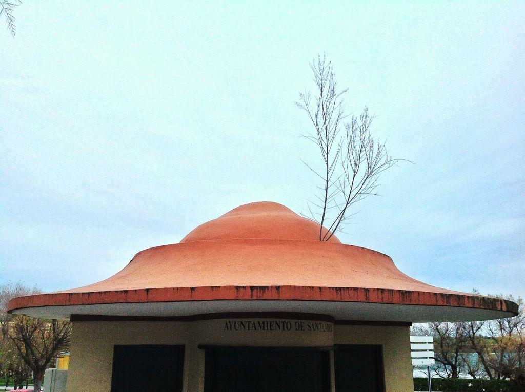 arbol-sobre-el-tejado