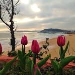 La primavera llama a la puerta