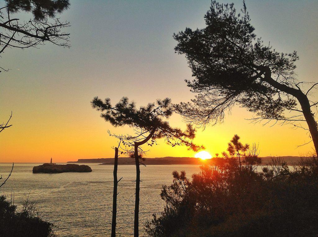 isla-mouro-arboles-amanecer-santander