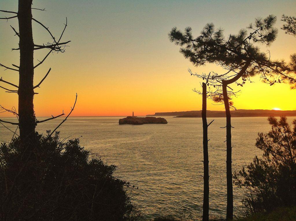 isla-mouro-arboles-amanecer