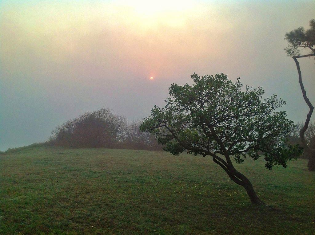kriptonita-sol-magdalena
