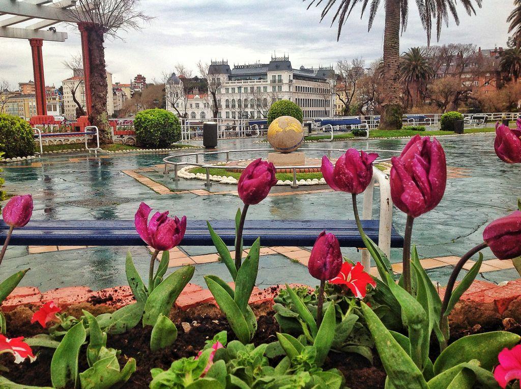 piquio-flores-bola-mundo