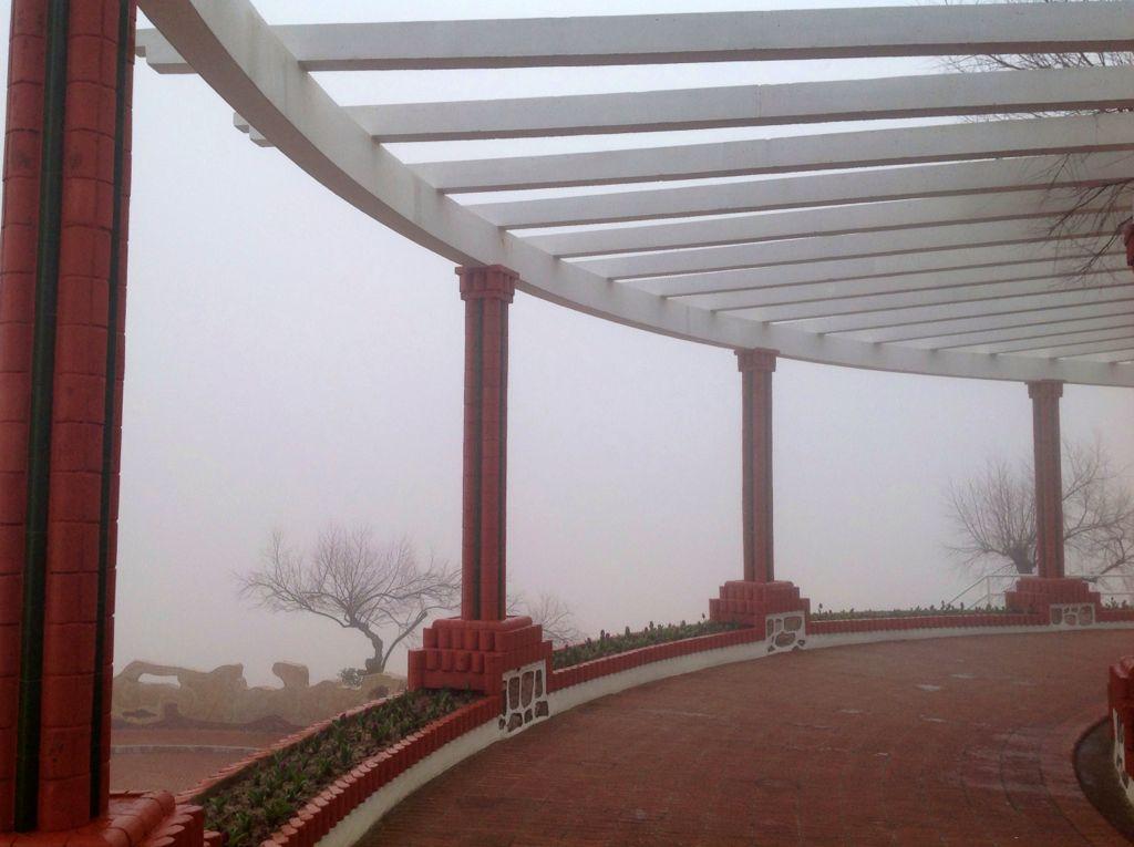 piquio-niebla