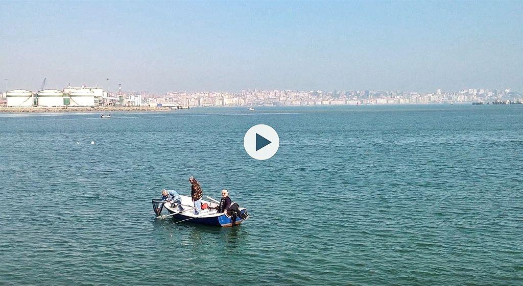 video-pesca-cachon
