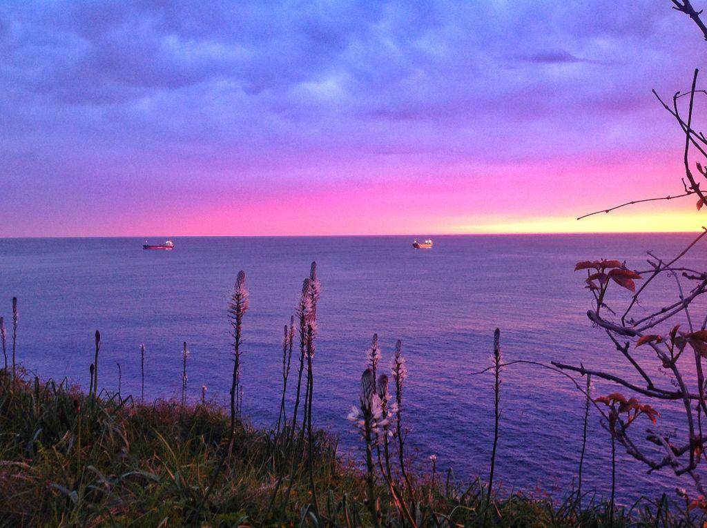 barcos-abra-sardinero-flores