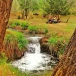 El parque de La Viesca, de zona minera a pulmón verde de Torrelavega