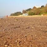 La playa de la Magdalena tiene un territorio prohibido para toallas