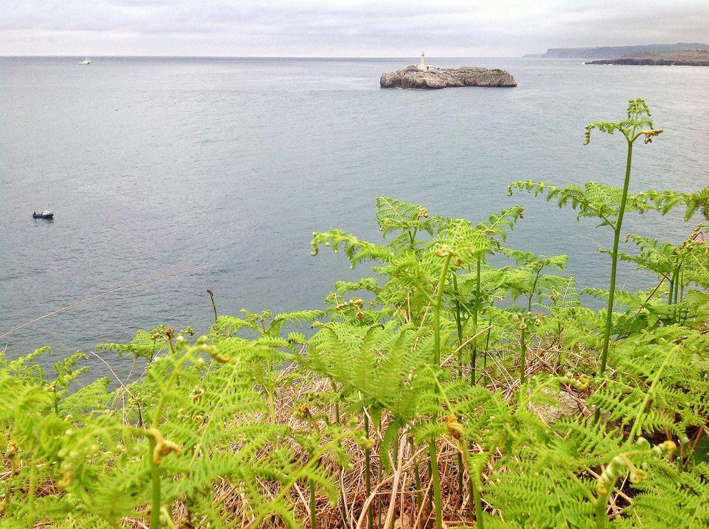 verde-tierno-mouro