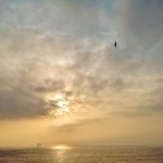 Volando entre la bruma