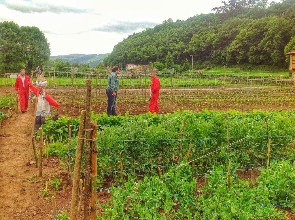 cultivar-la-tierra-valles-pasiegos-angel-manuel-agus
