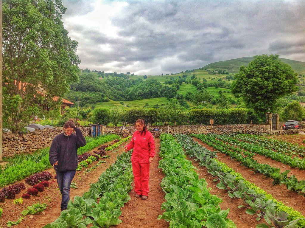 cultivar-la-tierra-valles-pasiegos-clara-maria-jose