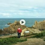 Callejas de Cantabria: De La Arnía a Portio