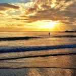 Amarillo Sardinero, azul bahía