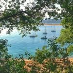 Veleros entre la hojarasca de la bahía de Santander
