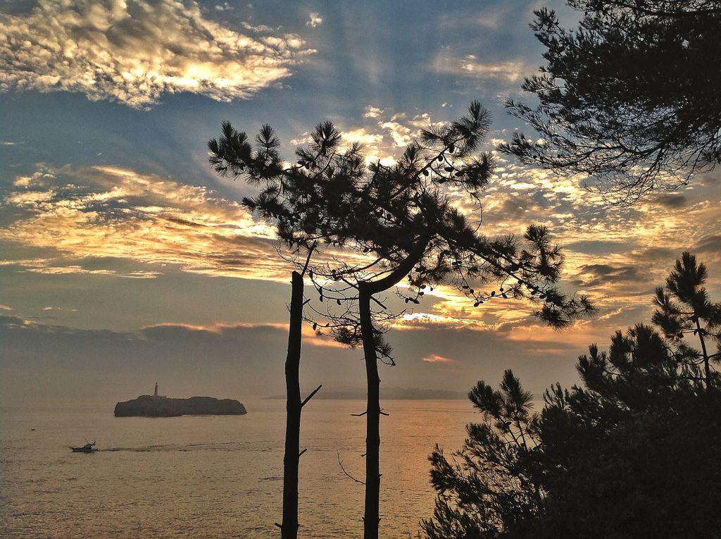 isla-mouro-santander-amanecer-arboles