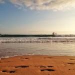 Fondeados en la cresta de la ola