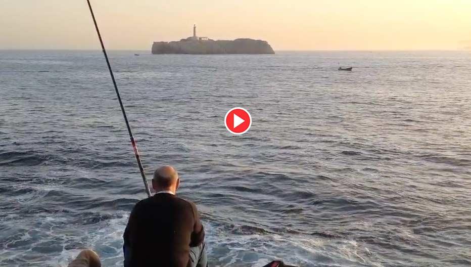 video-viene-pez