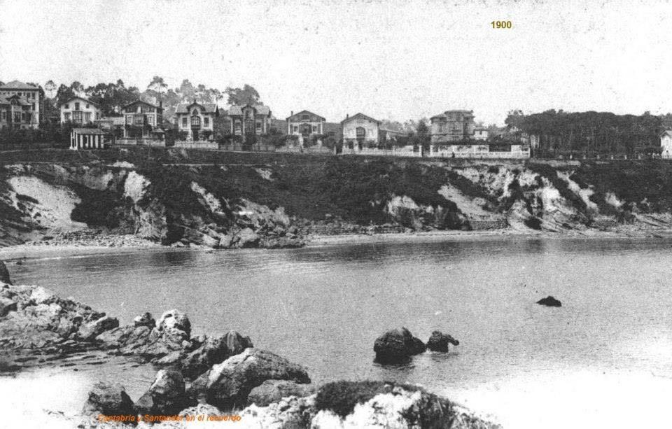camello-1900