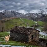 Pura belleza en las montañas del Miera
