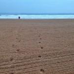 A esto se le llama estrenar playa