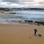 A la playa con la mejor compañía