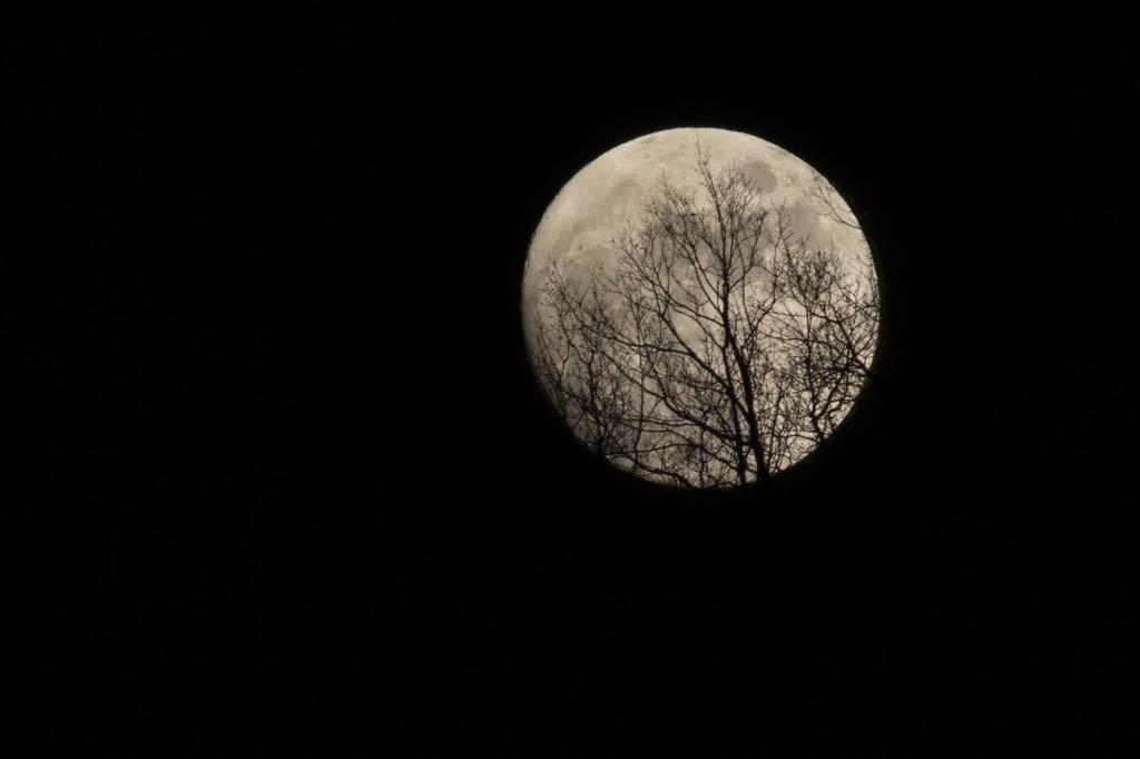primera-luna-llena-2015-julian-mijangos