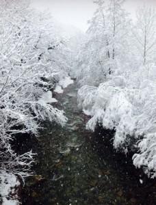 vega-pas-nieve-leire-diez