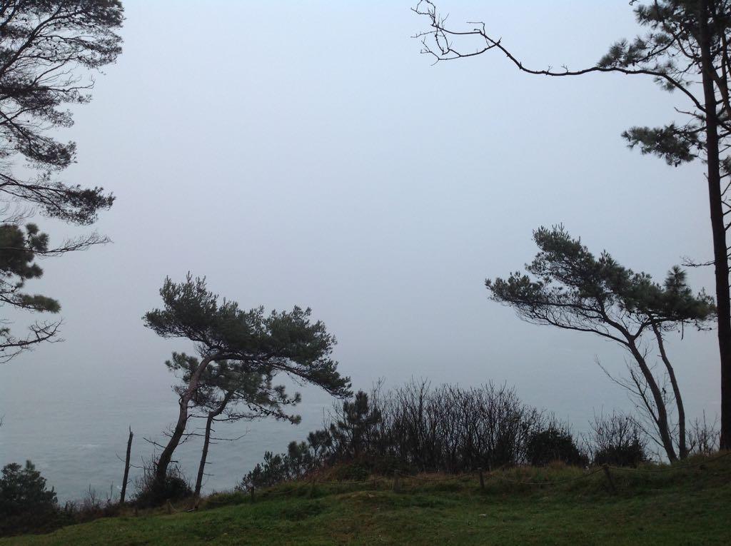 bahia-niebla-santander-magdalena