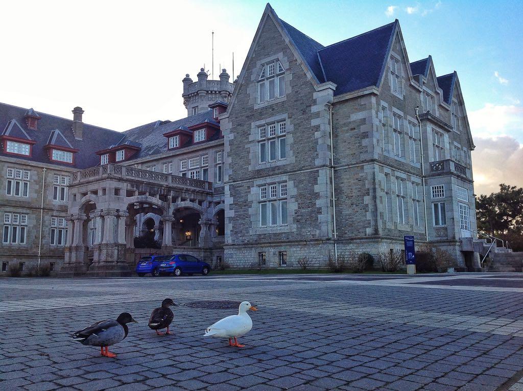 palacio-magdalena-patos-santander
