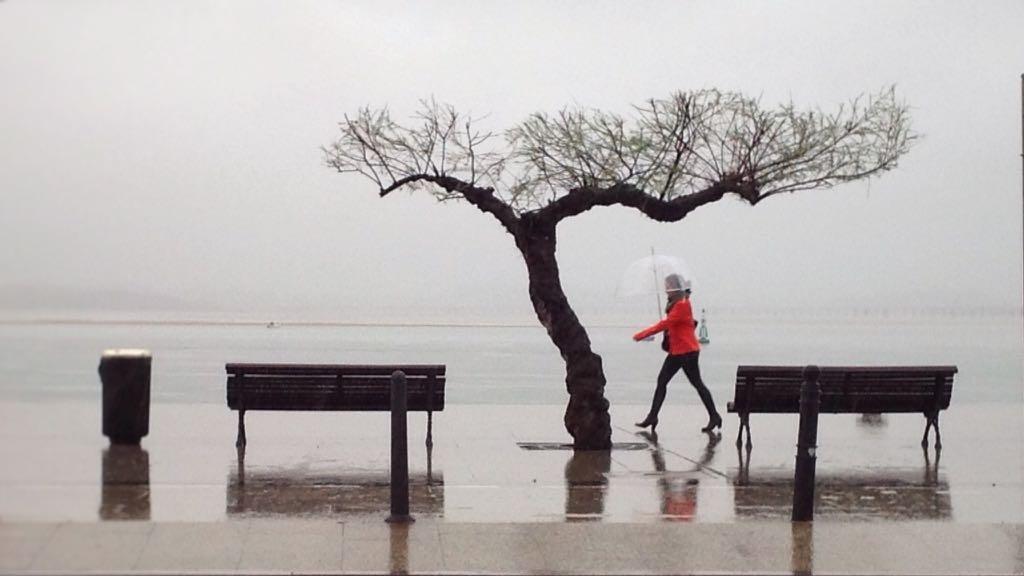muelle-calderon-paraguas