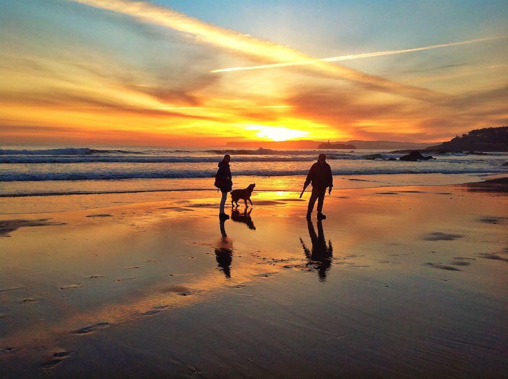 perro-amanecer-santander-sardinero